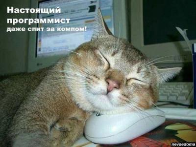 post-4093-0-44308700-1351433072_thumb.jpg
